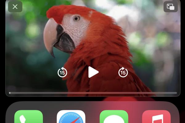 20+ Mẹo tốt nhất cho iPhone 12 và iPhone 12 Pro của bạn