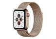Apple Watch Series 5 LTE 44mm Thép Cũ 99%